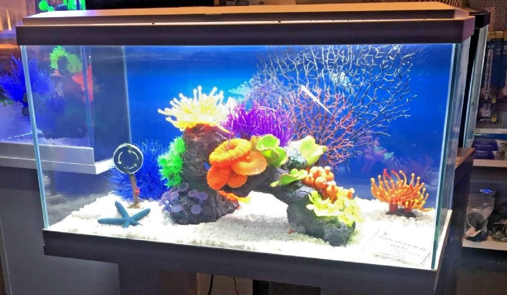 Ciano Aqua 60 LED Tropical Glass Aquarium - Includes Filter, Lights , Heater & Plants 58L WHITE